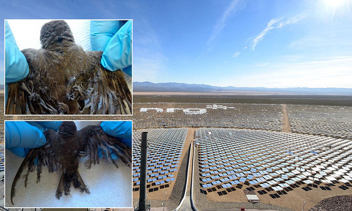 Ivanpah Solar Electric Generating System-World largest power plant can power 140000 homes-
