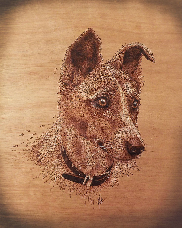 PYROGRAPHY: Impressive Portraits Of Nature Realized By The Careful Burning Of Wood -10