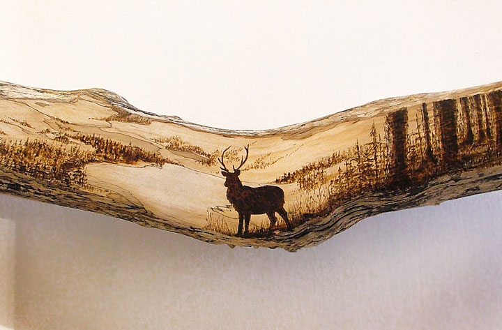 PYROGRAPHY: Impressive Portraits Of Nature Realized By The Careful Burning Of Wood -12