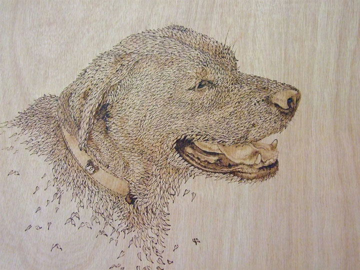 PYROGRAPHY: Impressive Portraits Of Nature Realized By The Careful Burning Of Wood -4
