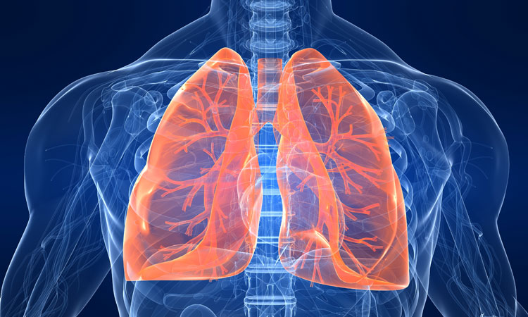 The World's First Artificial Lung: A Major Breakthrough For The Future Of Transplantation-2