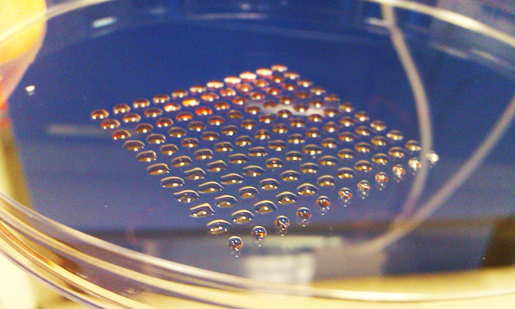 3D Printing Can Now Create Human Tissue To Heal Your Wounds-5