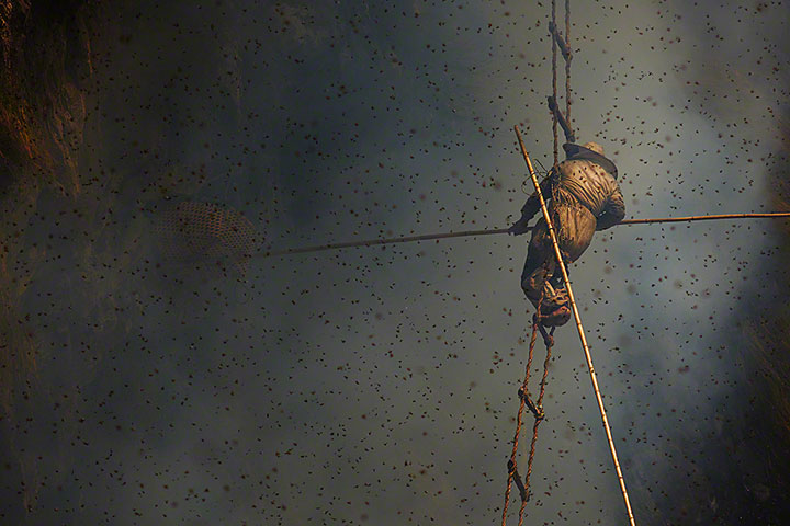 Nepalese Honey Hunter Risk Their Lives On High Cliffs To Feed Their Families -3