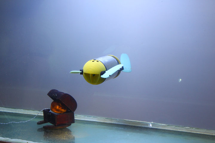 U-CAT: A Turtle Robot To Access Difficult Places Underwater (Video)-
