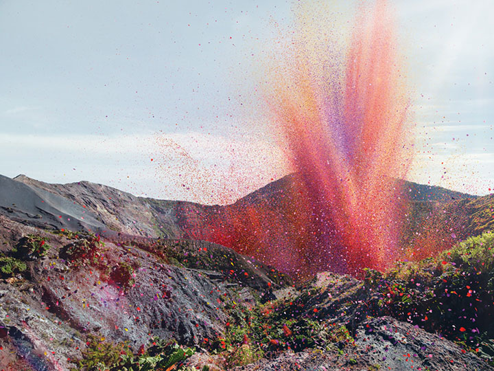 Amazing Spectacle 8000000 Flower Petals Falling On A Small Village-