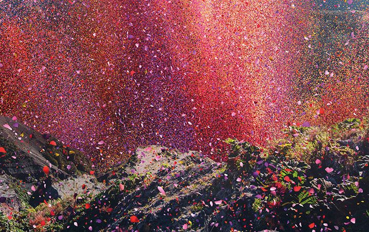 Amazing Spectacle 8000000 Flower Petals Falling On A Small Village-3