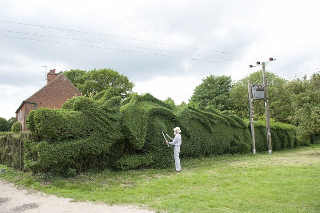 An English Gardener Grows A Giant Dragon In His Garden-
