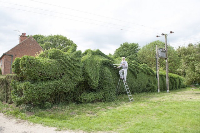 An English Gardener Grows A Giant Dragon In His Garden-3