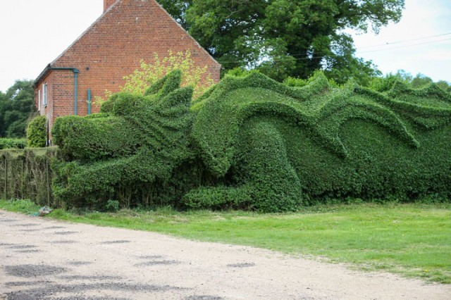 An English Gardener Grows A Giant Dragon In His Garden-4