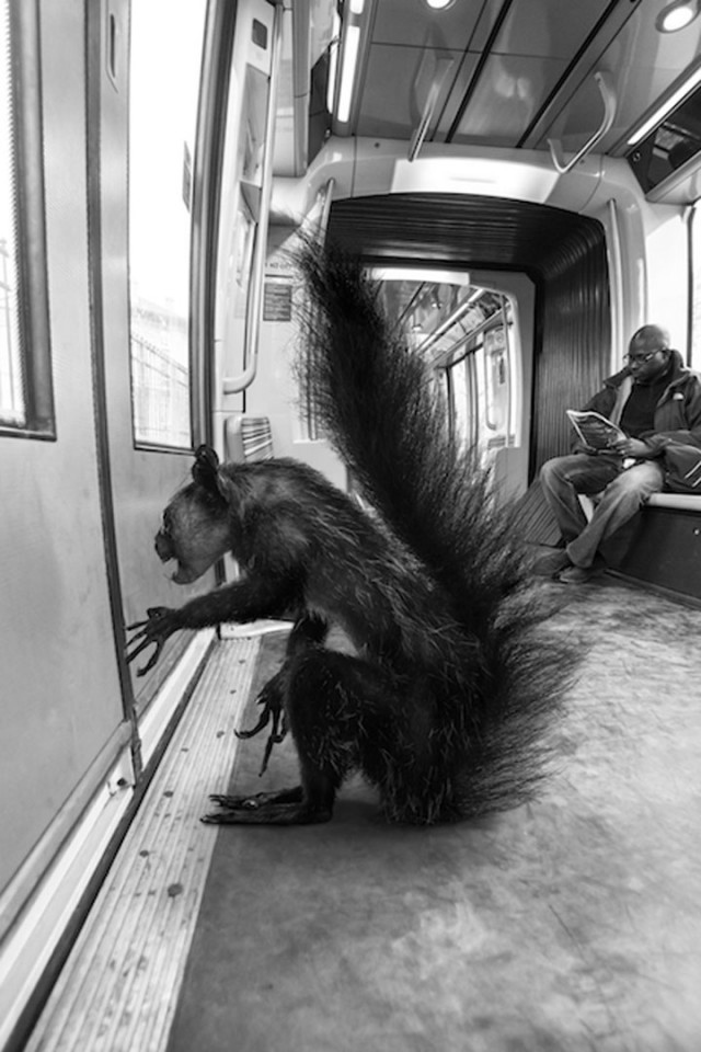 Animals Of Savannah In Paris Metro-5