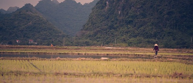 Discover The Most Beautiful Landscapes Of Vietnam In 3 Minutes Video-17