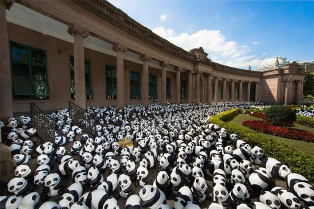 1600 Paper Mache Pandas Invade The City Of Hong Kong-2