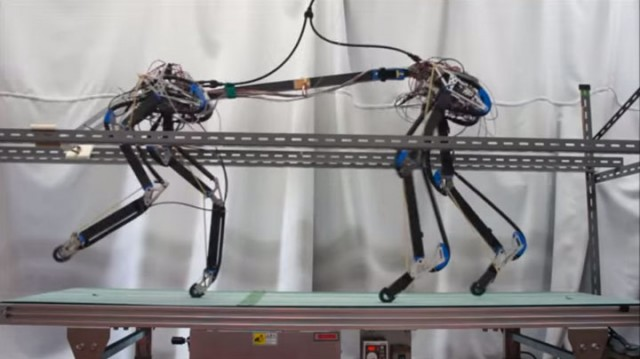 Pneupard: A Quadruped Robot Walks Like A Cheetah Using Artificial Muscles-1