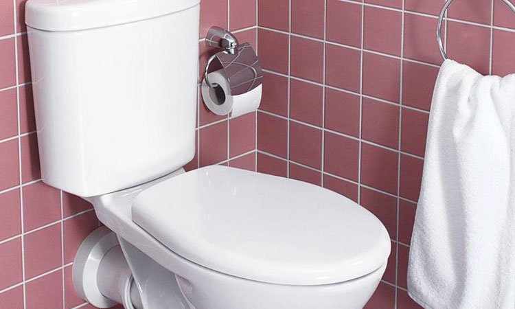 Researchers Design A Toilet That Can Generate Electricity-