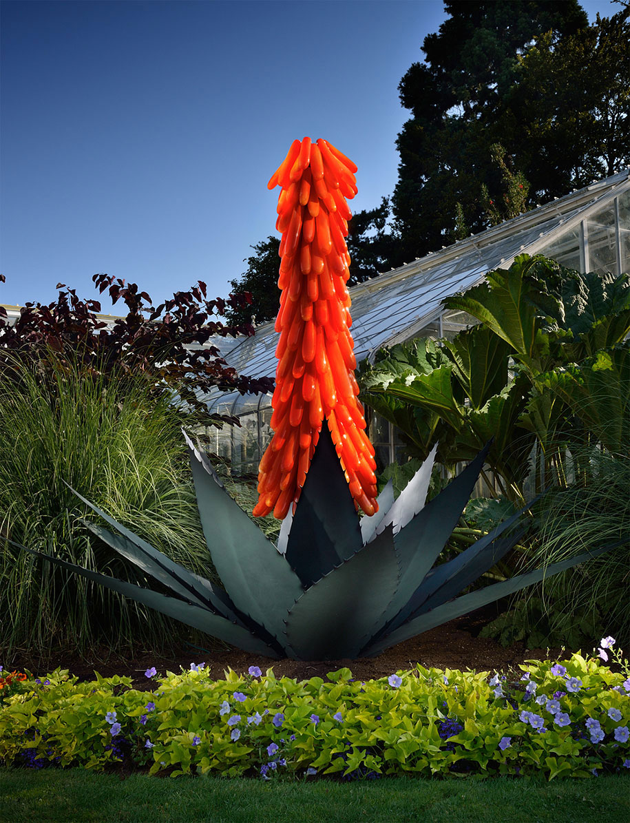 Gigantic And Realistic Flower Sculptures Made From Glass -18