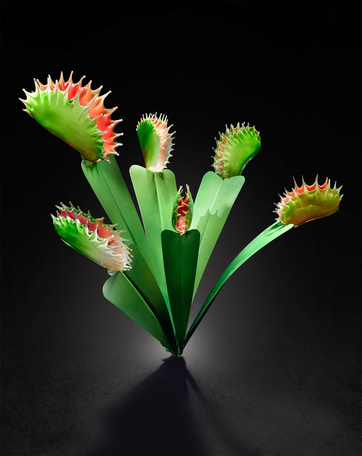 Gigantic And Realistic Flower Sculptures Made From Glass -4