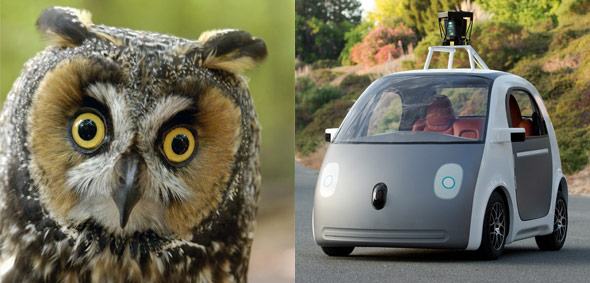 10 Things The New Google Driverless Car May Look Like-2