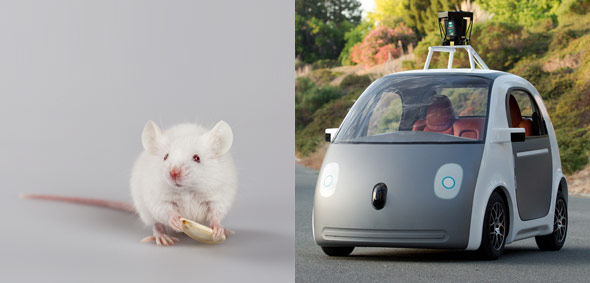 10 Things The New Google Driverless Car May Look Like-3