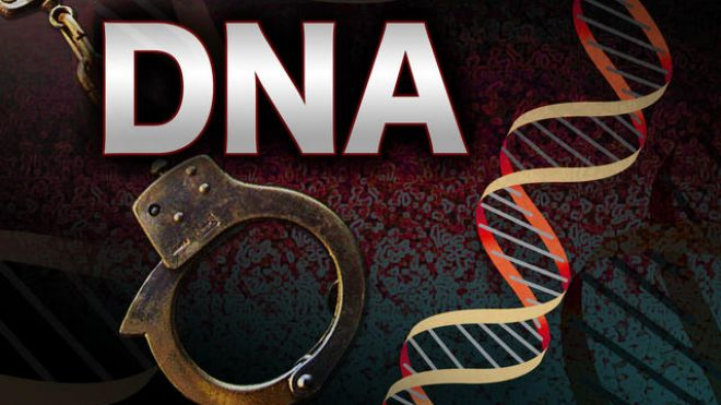 dna testing in the criminal justice system This evaluation examined the impact of mandatory dna testing of contribution of dna evidence in the criminal justice system recent developments in dna.