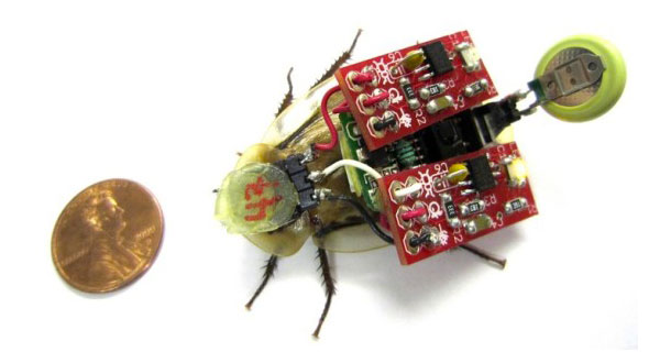 Cockroach Robot To Save Human Lives In Disasters-