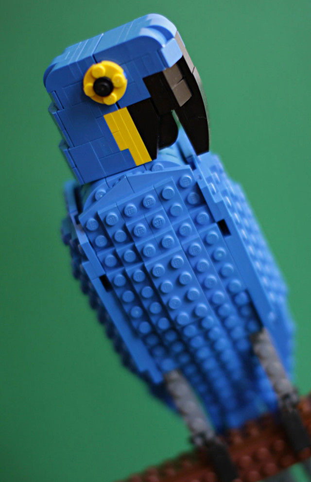 Amazing Bird Models Made Using Simple LEGO Bricks-14