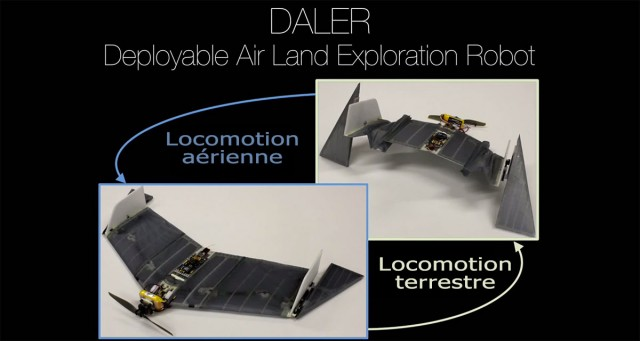 DALER-A bat inspired robot that can fly and move on the ground-1
