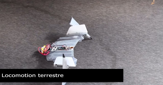 DALER-A bat inspired robot that can fly and move on the ground-9