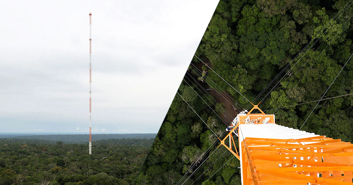 Discover This Gigantic Meteorological Tower Erected In Amazon Rainforest-1