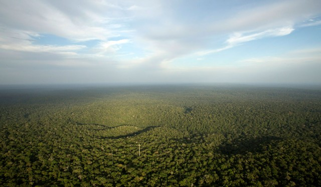 Discover This Gigantic Meteorological Tower Erected In Amazon Rainforest-6