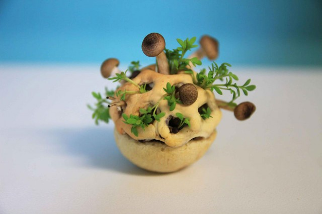 Enjoy Amazing 3D Printed Bio Food With Herbs And Mushrooms-2