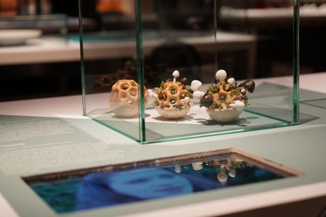 Enjoy Amazing 3D Printed Bio Food With Herbs And Mushrooms-7