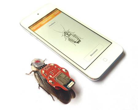 Insect cyborg: A beetle Can Now Be Turned Into A Drone-1