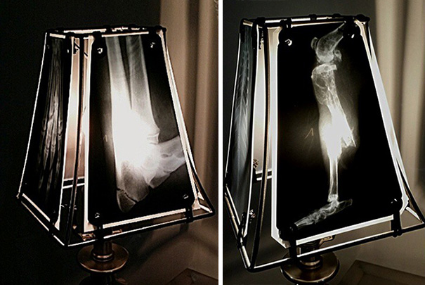 Make Awesome Lampshades From Animal X-Rays-3