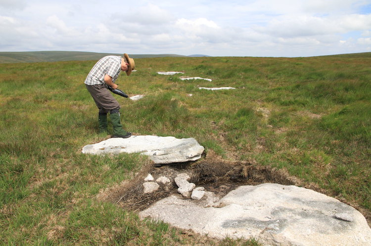 A new stone circle in Dartmoor