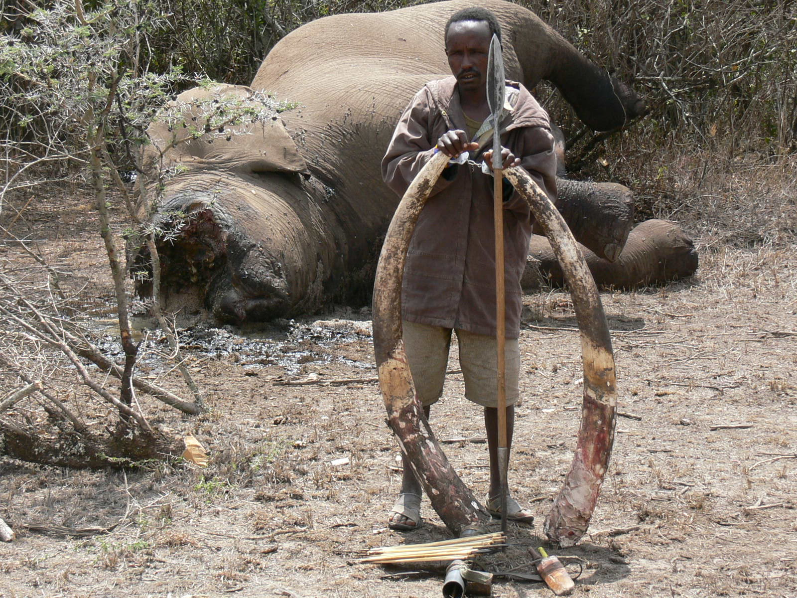 Air Shepherd: Drones To Fight Against Elephant Poaching-2