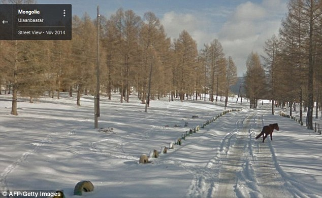 Google Street View Makes Us Travel To Remote Locations Of Mongolia-2