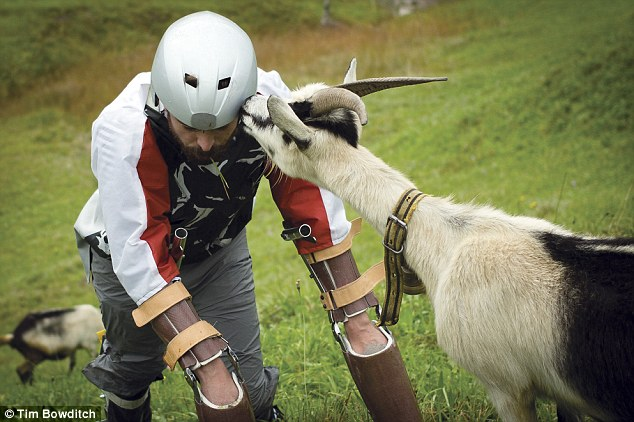 A Researcher Spends Time As A Goat In A Herd And The Reason Would Certainly Disturb You-1