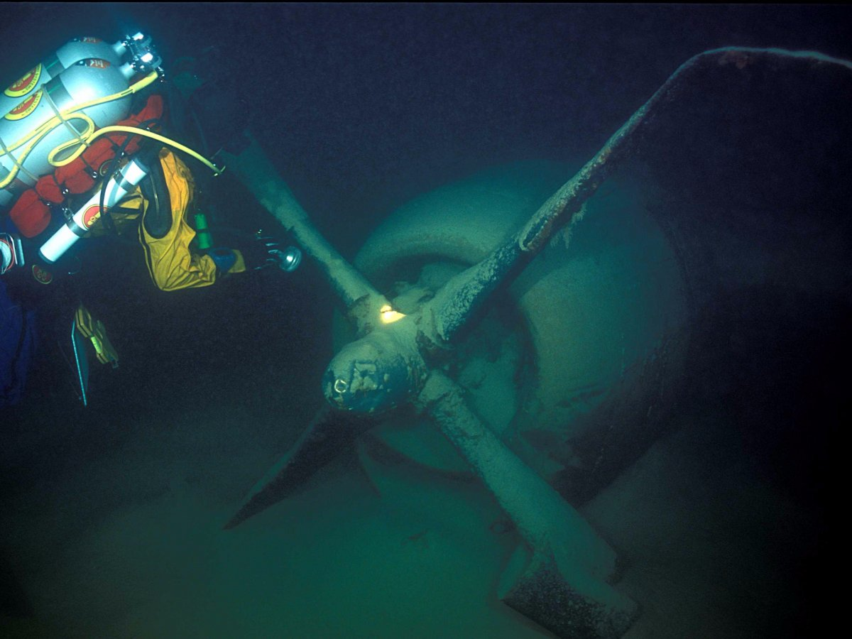 Amazing Pictures of World War 2 Bomber At Bottom Of Nevada Lake-