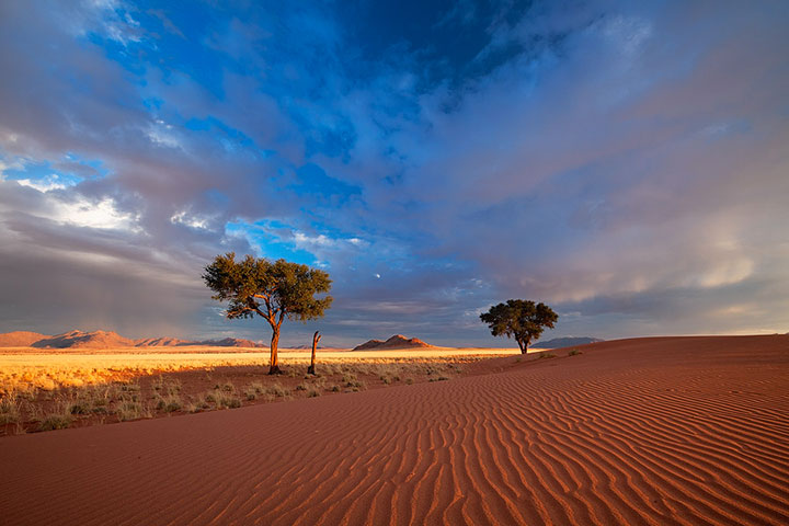 Most Beautiful Photographs To Reveal The Beautiful Namibian Desert-11