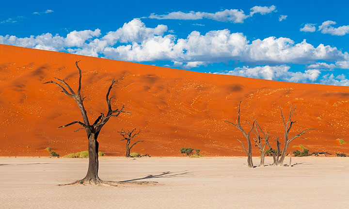 Most Beautiful Photographs To Reveal The Beautiful Namibian Desert-16