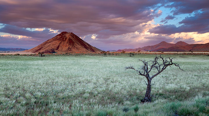 Most Beautiful Photographs To Reveal The Beautiful Namibian Desert-17