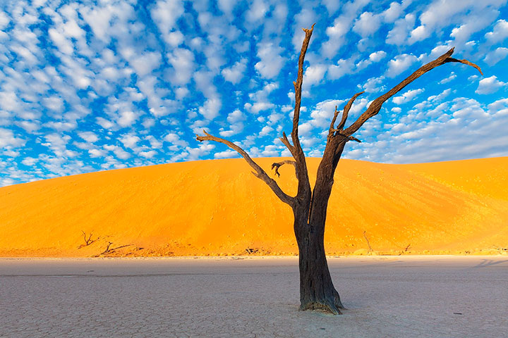 Most Beautiful Photographs To Reveal The Beautiful Namibian Desert-2
