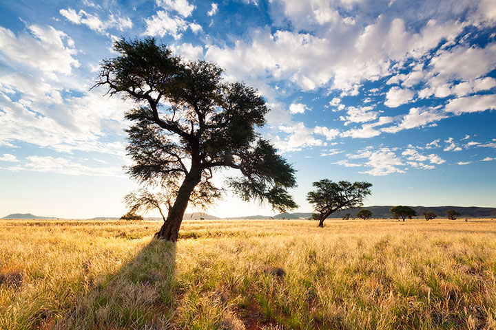 Most Beautiful Photographs To Reveal The Beautiful Namibian Desert-23