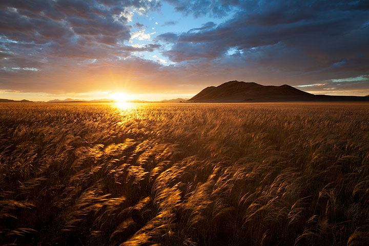 Most Beautiful Photographs To Reveal The Beautiful Namibian Desert-26