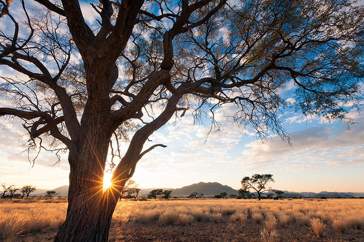 Most Beautiful Photographs To Reveal The Beautiful Namibian Desert-27