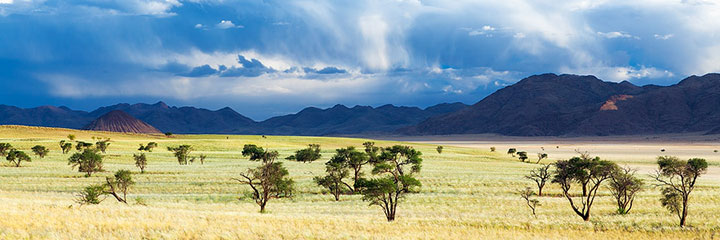 Most Beautiful Photographs To Reveal The Beautiful Namibian Desert-28