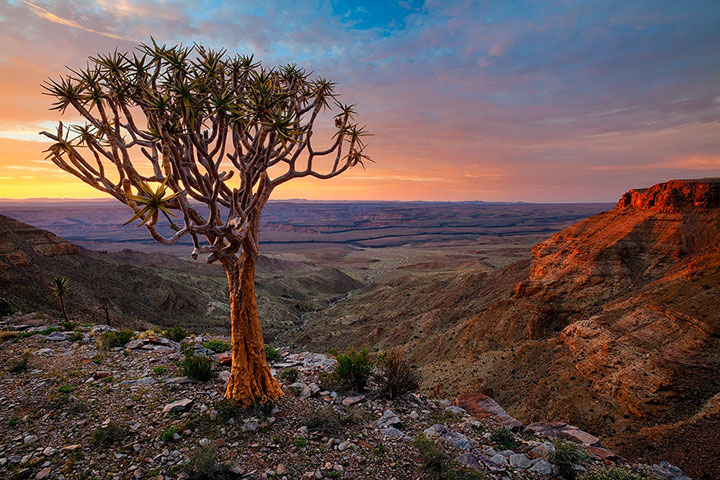 Most Beautiful Photographs To Reveal The Beautiful Namibian Desert-30