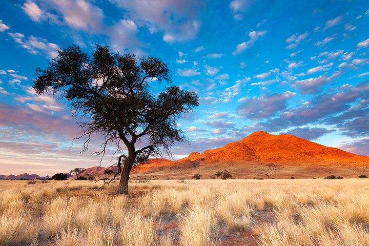 Most Beautiful Photographs To Reveal The Beautiful Namibian Desert-33