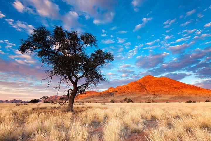 Most Beautiful Photographs To Reveal The Beautiful Namibian Desert-33