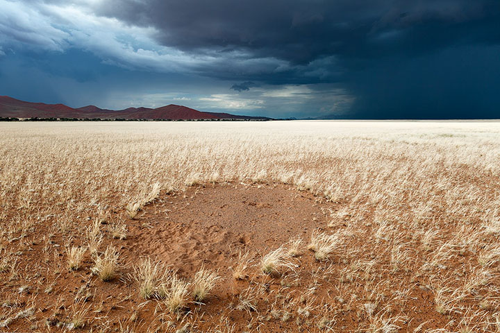 Most Beautiful Photographs To Reveal The Beautiful Namibian Desert-42